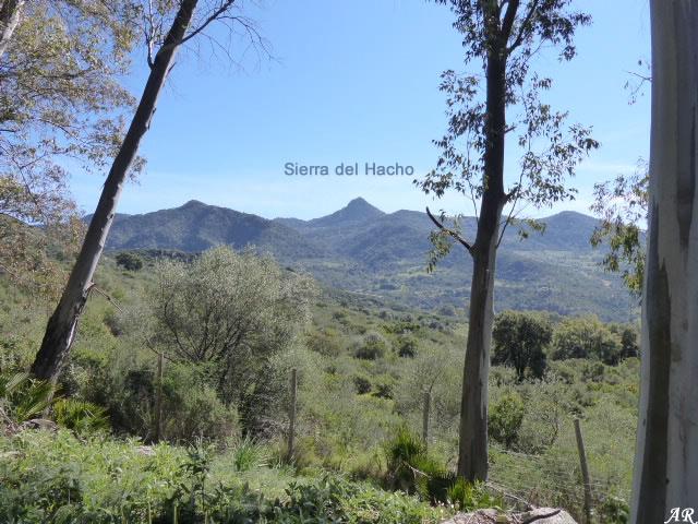 Mirador de las Buitreras - El Colmenar
