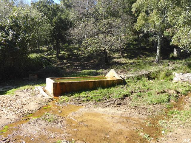 Fuente de la Pulga o Pilar del Cigarrón - Cortes de la Frontera - Parque Natural de los Alcornocales