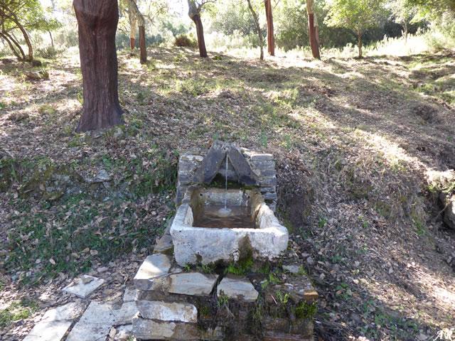 Fuente del Piloncito - Parque Natural de los Alcornocales - Cortes de la Frontera