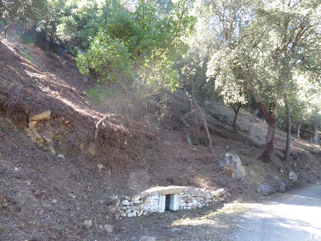 Manantial de la Hoya - Parque Natural de los Alcornocales - Cortes de la Frontera