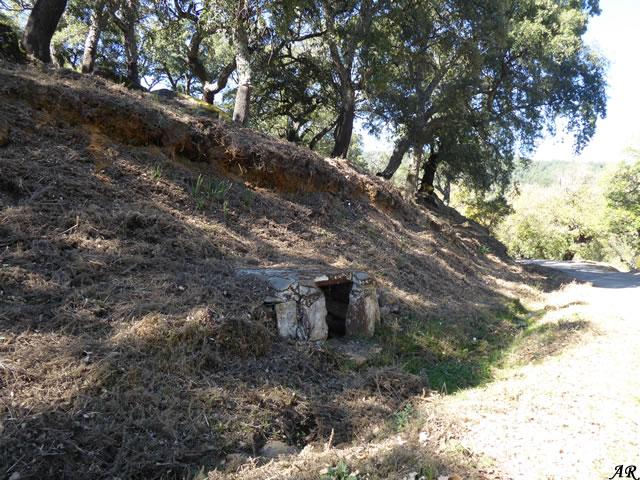 Manantial del Alcotán - Parque Natural de los Alcornocales - Cortes de la Frontera