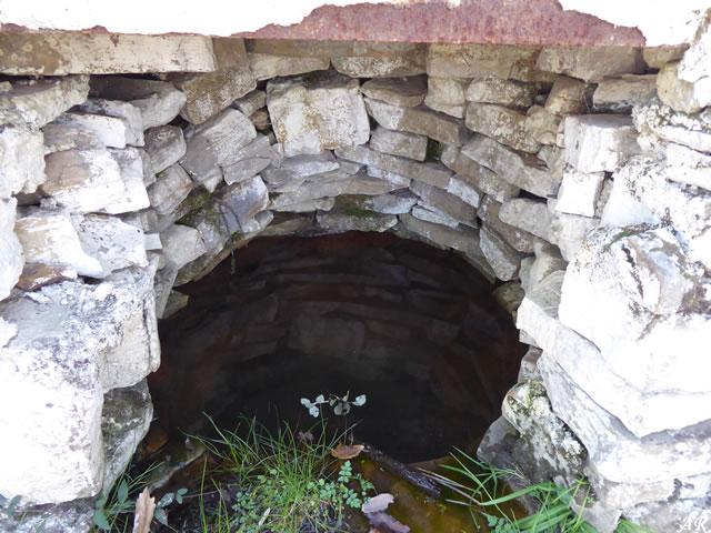 Manantial del Robledal - Parque Natural de los Alcornocales - Cortes de la Frontera
