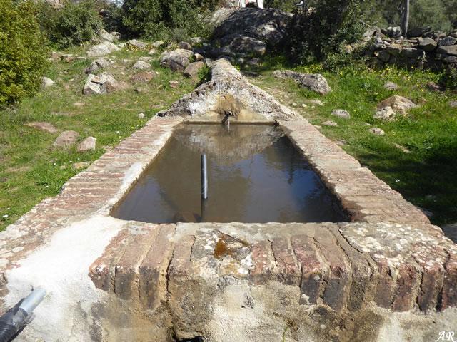 Pilar de los Tigres - El Colmenar - Cortes de la Frontera