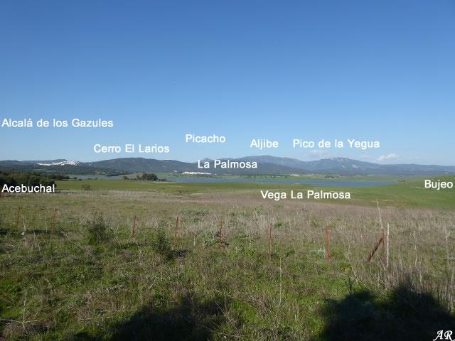 Mirador de los Ratones - Alcalá de los Gazules - Parque Natural de los Alcornocales