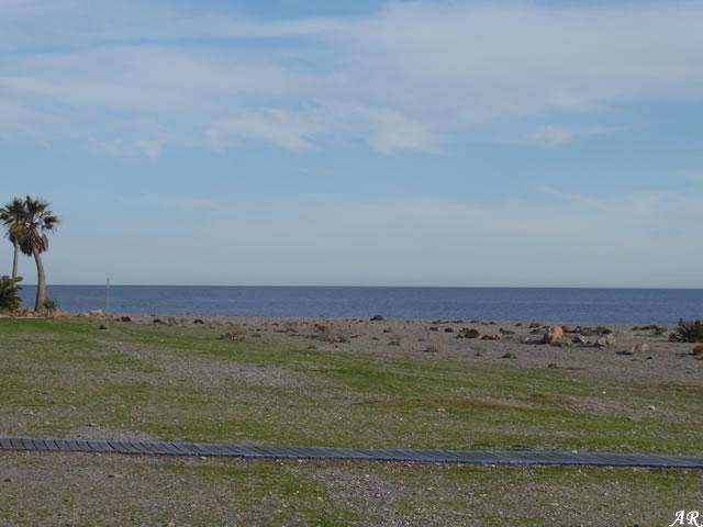 Flecha litoral de Calahonda
