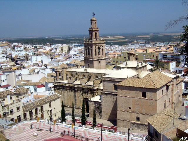 Morón de la Frontera - Provincia de Sevilla