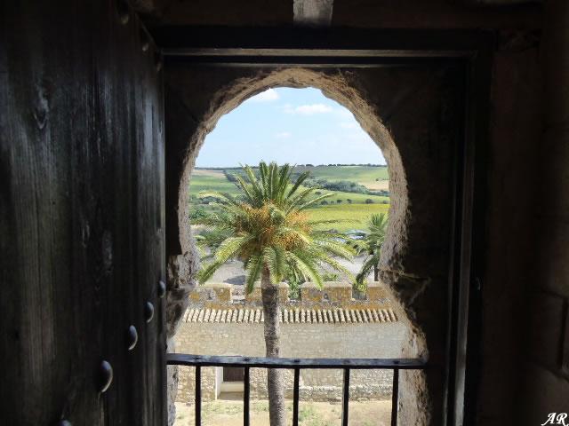 Vista desde la Torre del Homenaje del Castillo de Gigonza