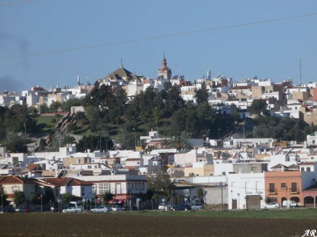 Comarca del Bajo Guadalquivir