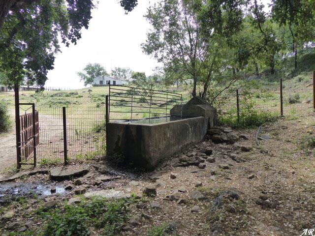 Fuente de Giraldo - Cortes de la Frontera