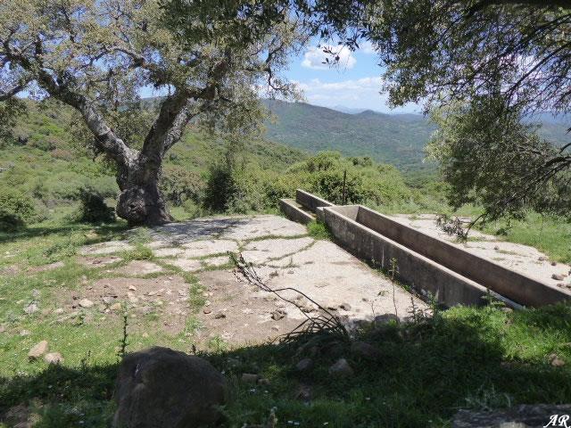 Fuente del Rancho de los Dornajos